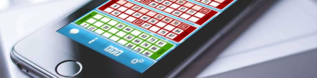 Bingo Online And Bingo Bonuses
